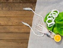 Frischer Kalmar auf Holztisch Stockfotos