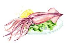 Frischer Kalmar mit Zitrone auf der Platte, Meeresfrüchte, Aquarellhandgezogene Illustration lokalisiert auf weißem Hintergrund vektor abbildung