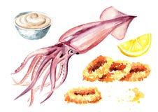 Frischer Kalmar und gebratene Kalmarringe mit Soßen- und Zitronensatz, Meeresfrüchte, Aquarellhandgezogene Illustration lokalisie stock abbildung