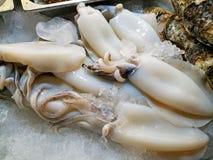 Frischer Kalmar und Meeresfrüchte lizenzfreie stockbilder