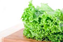 Frischer Kopfsalat Stockbilder