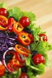 Frischer Kopfsalat-Tomate-Pfeffer-olivgrüner Zwiebelen-Salat Lizenzfreie Stockfotos