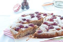 Frischer Kuchen mit Jahreszeit der roten Traube und Puderzucker Lizenzfreie Stockbilder