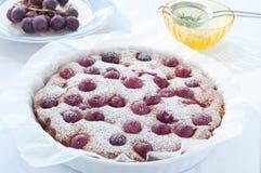 Frischer Kuchen mit Jahreszeit der roten Traube und Puderzucker Stockbilder