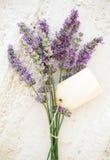 Frischer Lavendel Stockfotos