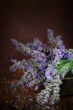 Frischer Lavendel stockbild