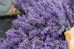 Frischer Lavendel in einem Korb Stockfotos