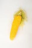 Frischer Mais mit Pfeiler Lizenzfreie Stockfotos