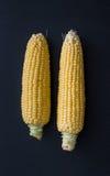 Frischer Mais mit Pfeiler Stockbild