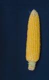 Frischer Mais mit Pfeiler Lizenzfreie Stockbilder