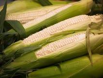 Frischer Mais vom Gleichstrom-Markt Stockbilder