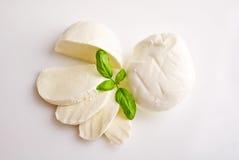 Frischer Mozzarella mit Basilikum Lizenzfreie Stockbilder