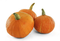 Frischer orange Kürbis Stockbild