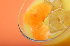 Frischer Orangensaft lizenzfreie stockbilder
