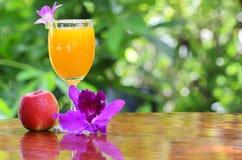 Frischer Orangensaft Lizenzfreies Stockbild