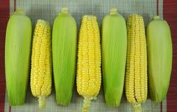 Frischer organischer gelber Zuckermais Stockbild