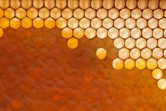 Frischer organischer Honig im Wachskamm Makrofoto des Bioprodukts Flache Lage lizenzfreies stockfoto