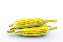 Frischer organischer Mais Lizenzfreie Stockbilder