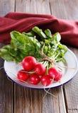 Frischer organischer Rettich auf hölzernem Hintergrund Stockfotografie
