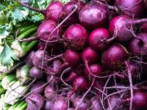 Frischer organischer Sellerie und Rote-Bete-Wurzeln an Landwirte Markt Lizenzfreie Stockfotos