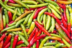 Frischer Paprika war defekter Stiel auf Frischmarkt des Korbes Stockbilder