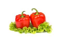 Frischer Paprika zwei auf einem Salatblatt stockbild