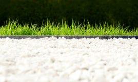 Frischer Parkrasen Stockfoto