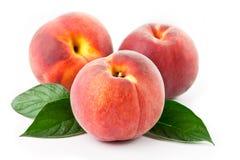 Frischer Pfirsich auf einem weißen Hintergrund mit Blättern Lizenzfreie Stockbilder