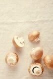 Frischer Pilzchampignon auf weg von weißem Hintergrund Lizenzfreies Stockfoto
