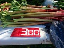 Frischer Rhabarber für Verkauf auf einem Bauernhofstand mit Preis Lizenzfreie Stockbilder