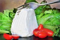 Frischer ricotta Käse geschnitten mit Gabel Lizenzfreie Stockfotos