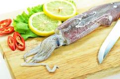 Frischer roher Calamari und Messer Stockfotos