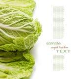 Frischer roher Kopfsalat und Kräuter Stockfotos