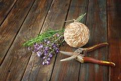 Frischer Rosmarin und Salbei wählten vom Garten aus Lizenzfreie Stockfotografie
