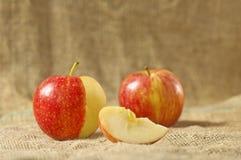 Frischer roter Apfel zwei Stockbild