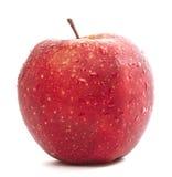 Frischer roter Apple Lizenzfreie Stockfotografie