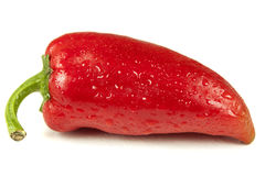 Frischer roter grüner Pfeffer Stockfotos