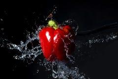 Frischer roter Paprika mit Wasserspritzen auf Schwarzem Stockbild