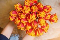 Frischer, roter und gelber Blumenstrauß von Blumen in einer Frau ` s Hand auf Kraftpapier, Frühling, März achter Bicolours Stockfotos