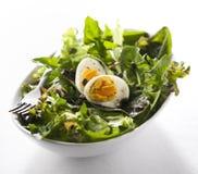 Frischer Salat Stockfotografie
