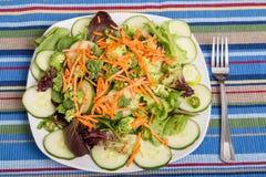 Frischer Salat auf gestreifter Platz-Matte Stockfoto