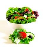 Frischer Salat auf weißem Hintergrund stockfotografie