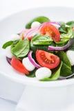Frischer Salat mit Abschluss des Käses, der Tomate, des Spinats und der purpurroten Zwiebel des Mozzarellas oben Lizenzfreie Stockbilder