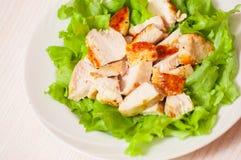 Frischer Salat mit der Hühnchenbrust lizenzfreie stockbilder