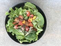 Frischer Salat mit gegrillten Lachsen mit Kopienraum Stockbilder
