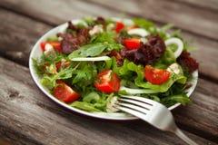 Frischer Salat mit Tomate und cucumber.green Stockbild