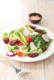 Frischer Salat mit Tomaten Lizenzfreie Stockfotografie