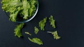 Frischer Salat verl?sst in der Sch?ssel auf dunklem Hintergrund lizenzfreies stockfoto