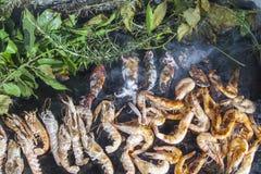 Frischer Scampi und Kalmare auf Grill lizenzfreies stockbild