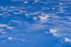 Frischer Schnee Lizenzfreies Stockfoto